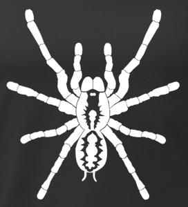 mikina potisk Pavouk detail